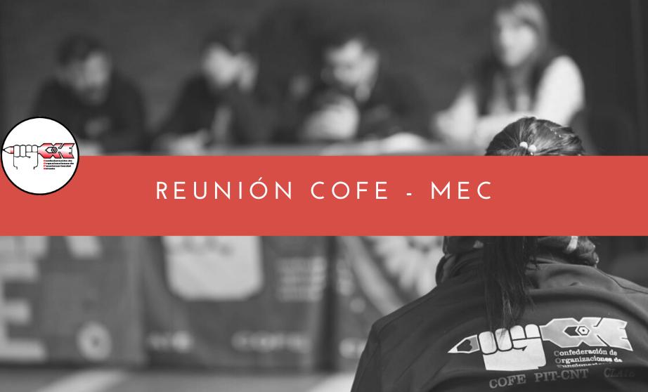 Reunión COFE-MEC